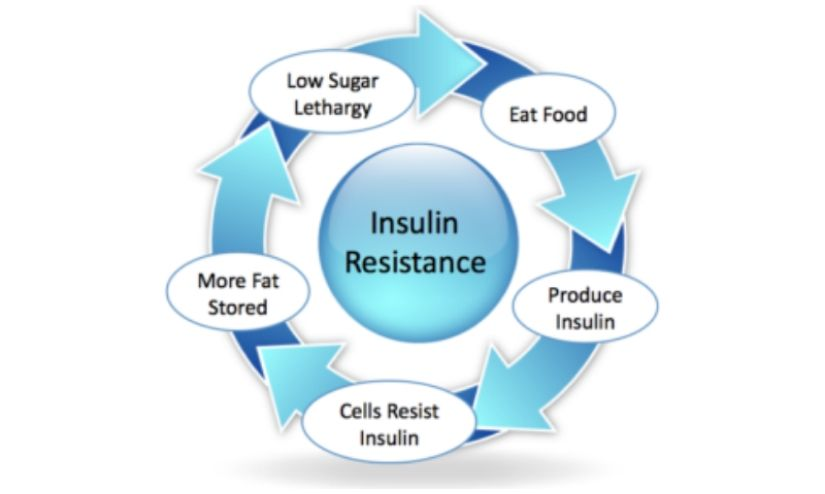 Obesity Can Lead To Insulin Resistance